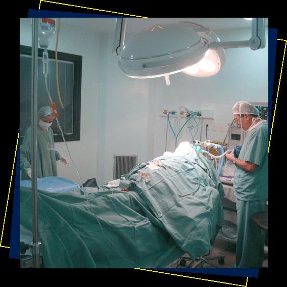 Cirurgias ortognáticas, maxilo-faciais e de enxerto celular realizadas em hospitais